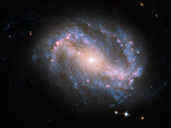 Das erste Foto eines Himmelskörpers mit der neuen Kamera überhaupt machte Hubble von der Galaxie NGC 6217. Die Galaxie liegt sechs Millionen Lichtjahre von der Erde entfernt im Sternbild Großer Bär.