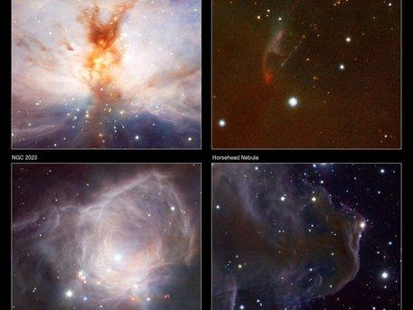 Arriba a la izquierda: la Nebulosa Llama (NGC 2024) muestra las estrellas jóvenes y brillantes en su centro y el humo-como zarcillos de polvo y gas en gran detalle.   Abajo a la izquierda: Cerca de la Nebulosa de la llama se encuentra una nebulosa de reflexión brillante llamada NGC 2023.   Arriba a la derecha: se encuentra un extraño objeto llamado Herbig-Haro 92 (HH92).   Inferior derecho: la Nebulosa Cabeza de Caballo (Barnard 33).