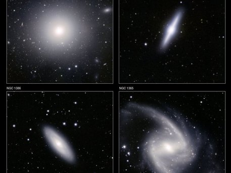 Arriba a la izquierda: La galaxia elíptica NGC 1399 es una de las más grandes y más brillantes de las galaxias en el cúmulo.   Abajo a la izquierda: La galaxia espiral NGC 1386 es uno de los miembros más pequeños de la agrupación.   Arriba a la derecha: La galaxia NGC 1381 es una galaxia de tipo lenticular - a medio camino entre una elíptica y una espiral.  Inferior derecho: La galaxia NGC 1365.