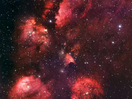 La Nebulosa Pata de Gato (NGC 6334) es una vasta región de formación estelar. Este nuevo retrato de NGC 6334 fue creado a partir de imágenes tomadas con el instrumento Wide Field Imager a los 2,2 metros de MPG / ESO telescopio en el Observatorio de La Silla en Chile.