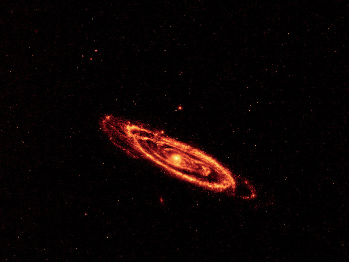 This image highlights the dust that speckles the Andromeda galaxy's spiral arms. It shows light seen by the longest-wavelength infrared detectors on WISE (12-micron light has been color coded orange, and 22-micron light, red).