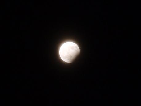 Sandro Helbig verließ sich auf die Automatik seiner Olympus-Digitalkamera und konnte so ganz einfach die Mondfinsternis im Bild festhalten.