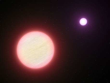 Discovery A Very Cool Pair Of Brown Dwarfs Redshift Live