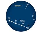 Venus passiert den Ringplaneten am 29. Oktober 3,0° südlich. Fernglasanblick gegen 18 Uhr MEZ (= 19 Uhr MESZ) bei 5° Gesichtsfelddurchmesser.