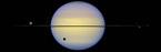 Der Ring des Saturn. Die diesjährige Kantenstellung lässt den Ringplaneten ohne schmückenden Ring erscheinen. Dafür sind seine Monde besser erkennbar.