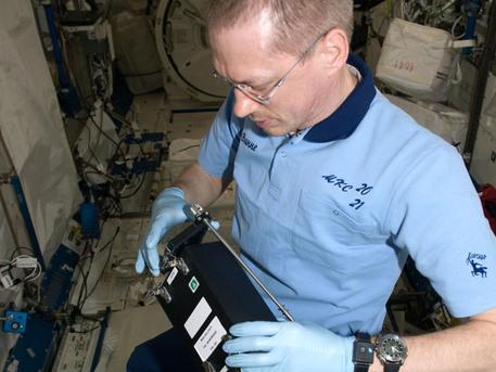 ISS021-E-028096 (17 de noviembre 2009) - Frank De Winne (Agencia Espacial Europea) , comandante de la Expedición 21, trabaja con el experimento RadSilk en el laboratorio Kibo de la Estación Espacial Internacional. RadSilk examina los efectos de la exposición a la radiación en condiciones de microgravedad en los gusanos de seda.