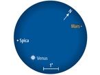 Am 30. August stehen Mars und Venus nahe bei Spica in der Jungfrau.