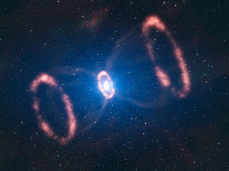 This artist's impression of the material around a recently exploded star, known as Supernova 1987A (or SN 1987A), is based on observations which have for the first time revealed a three dimensional view of the distribution of the expelled material. The observations were made by astronomers using ESO's Very Large Telescope. The original blast was not only powerful, according to the new results. It was also more concentrated in one particular direction. This is a strong indication that the supernova must have been very turbulent, supporting the most recent computer models. This image shows the different elements present in SN 1987A: two outer rings, one inner ring and the deformed, innermost expelled material.  Just how a supernova explodes is not very well understood, but the way the star exploded is imprinted on this inner material. The astronomers could deduce that this material was not ejected symmetrically in all directions, but rather seems to have had a preferred direction. Besides, this direction is different to what was expected from the position of the rings.