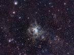 La Nebulosa Tarántula en la Gran Nube de Magallanes