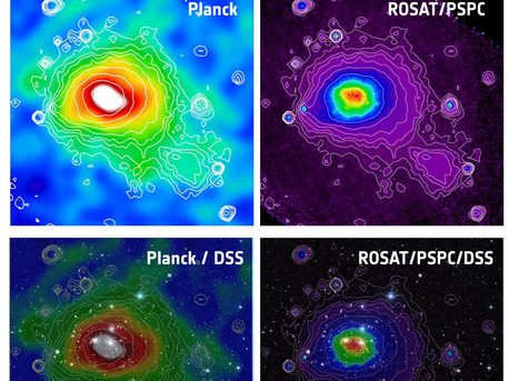 These images of the Coma cluster (also known as Abell 1656), a very hot and nearby cluster of galaxies, show how it appears through the Sunyaev-Zel'dovich Effect (top left) and X-ray emission (top right).  The top-left panel shows the Sunyaev-Zel'dovich image of the Coma cluster produced by Planck, and the top-right panel shows the same cluster imaged in X-rays by the ROSAT satellite. The colours in both images map the intensity of the measured signals. The X-ray contours are also superimposed on the Planck image as a visual aid.  As a comparison, the images are shown superimposed on a wide-field optical image of the Coma cluster from the Digitised Sky Survey in the two lower panels.  Located at a distance of about 300 million light-years from us, the Coma cluster extends over more than two degrees on the sky, corresponding to over 4 times the angular size of the full Moon. This image of the Coma cluster highlights Planck's ability to observe objects on very large scales, thanks to its all-sky survey strategy.  The region depicted in each image is slightly larger than 2 degrees.