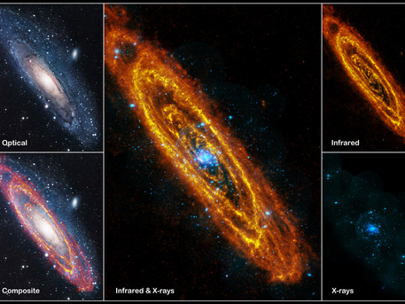 The Andromeda Galaxy is our nearest large galactic neighbour, containing several hundred billion stars. Combined, these images show all stages of the stellar life cycle. The infrared image from Herschel shows areas of cool dust that trace reservoirs of gas in which forming stars are embedded. The optical image shows adult stars. XMM-Newton's X-ray image shows the violent endpoints of stellar evolution, in which individual stars explode or pairs of stars pull each other to pieces.