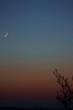 Mond Jupiter und Merkur 29.12.2008